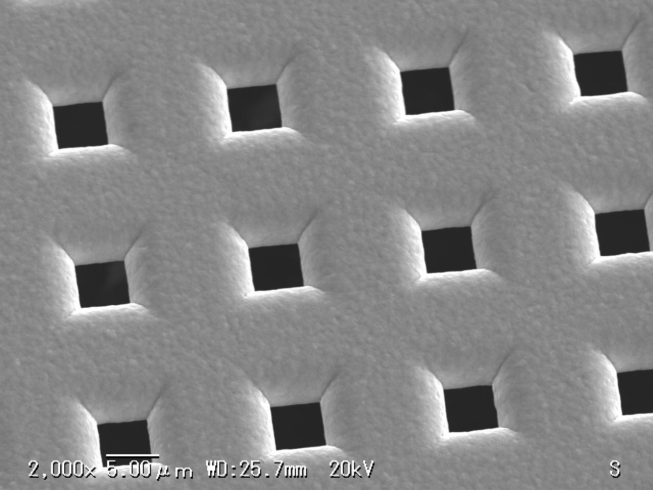 NiΦ5um surface SEM
